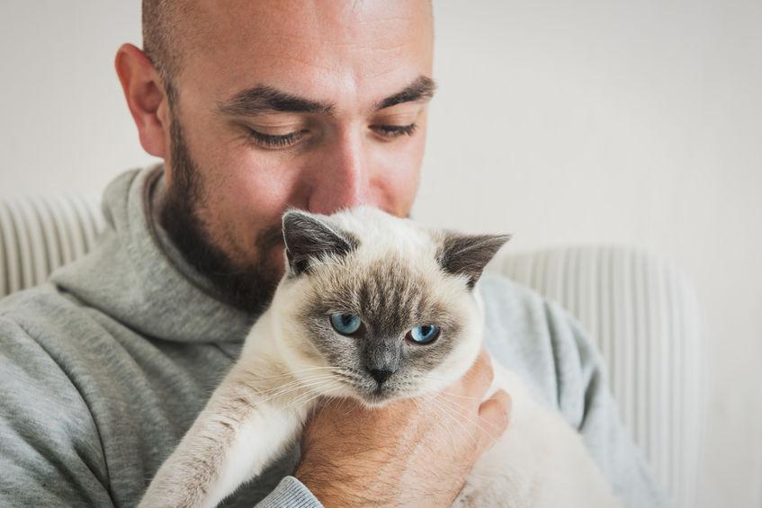 Imagem de homem segurando gato.
