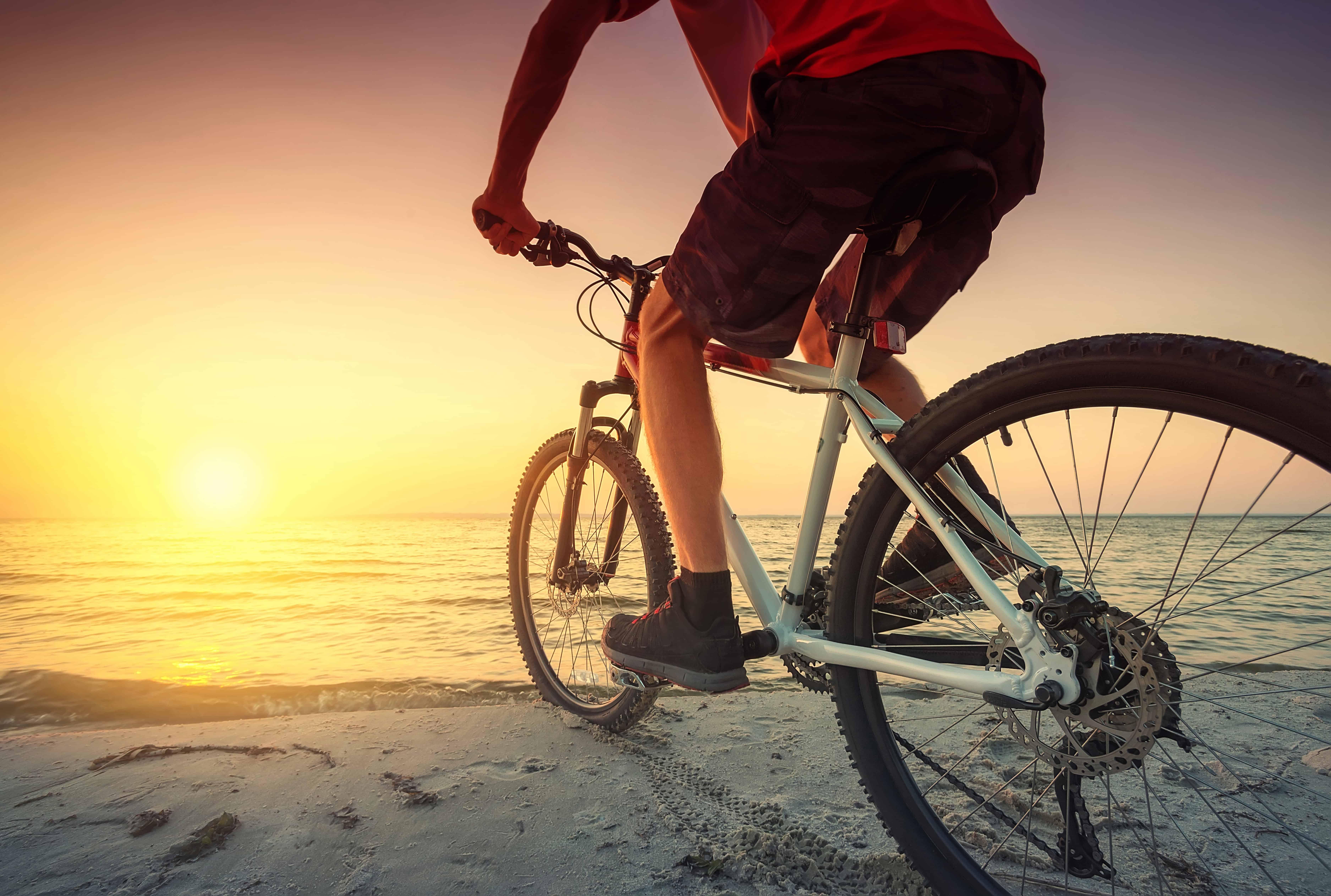 Mountain bike: Qual é a melhor de 2021?