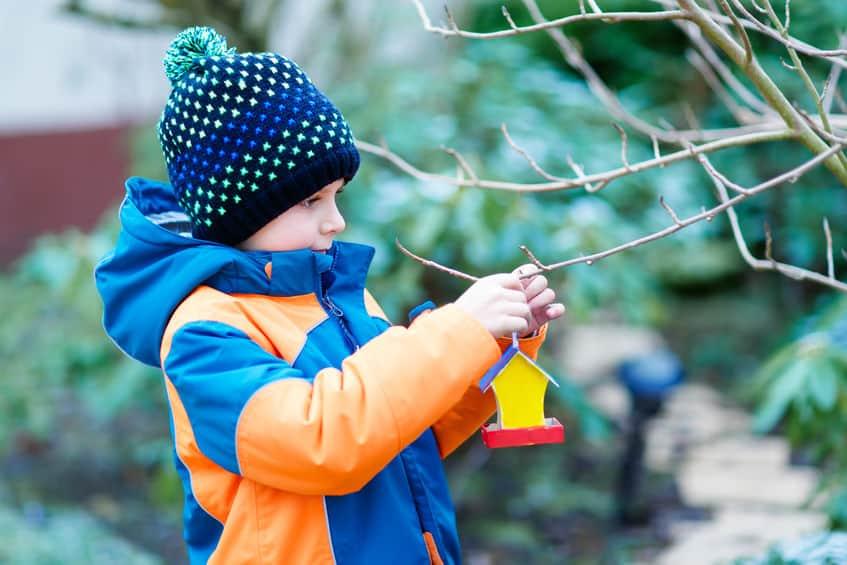 Imagem de menino pendurando comedouro para pássaros em árvore.