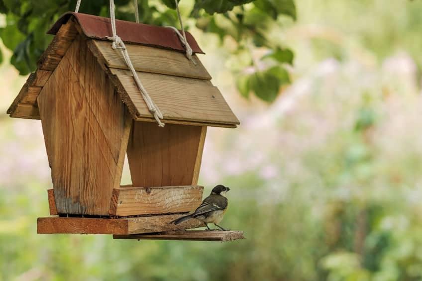 Imagem de comedouro para pássaros de madeira em árvore com passarinho sobre ele.