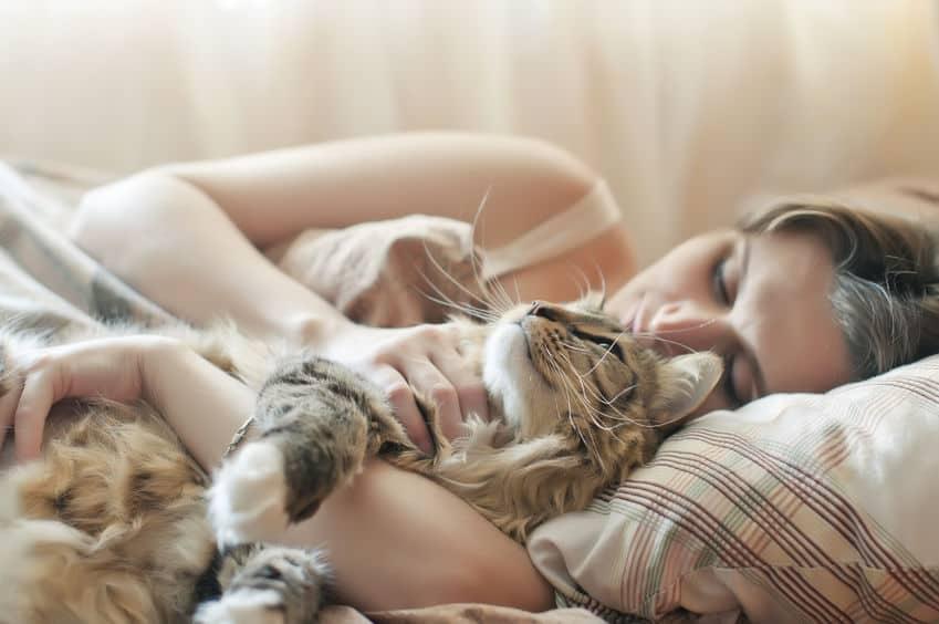 Gato e sua dona dormindo.