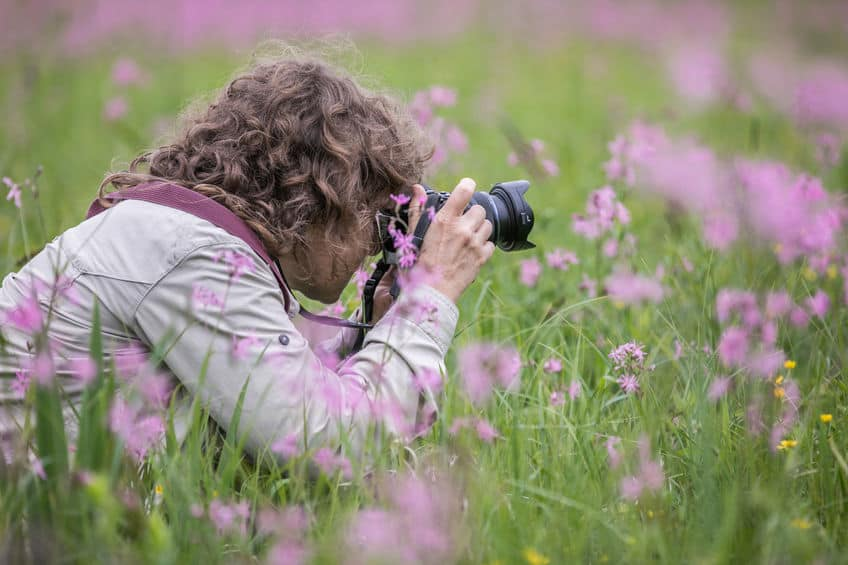 Mulher fazendo foto em campo.