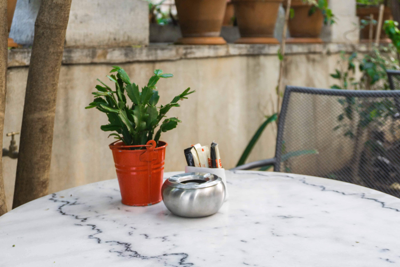 Imagem de mesa com cinzeiro e vaso de planta em cima.