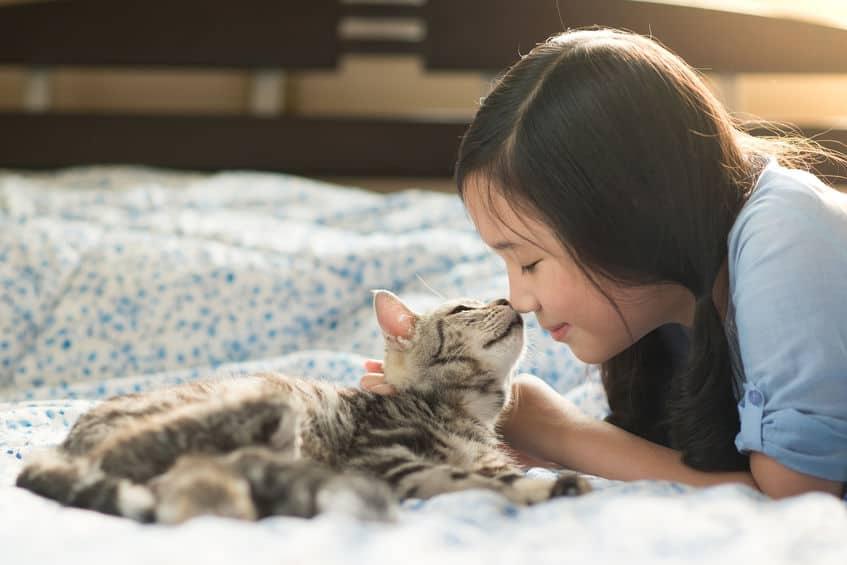 Menina brincando com gato.