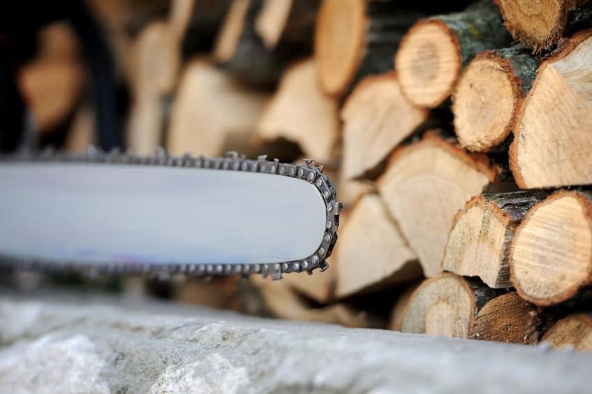 Imagem de ponta de motoserra com madeiras ao fundo.