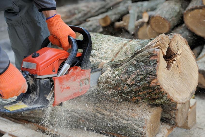Imagem de pessoa cortando tronco com motoserra.