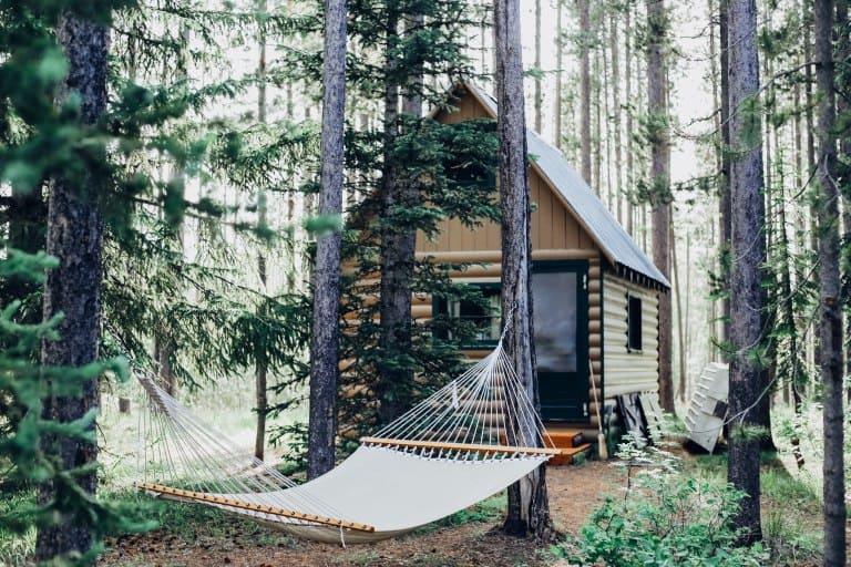 Um rede pendurada em árvores em meio a campo com casa ao fundo.