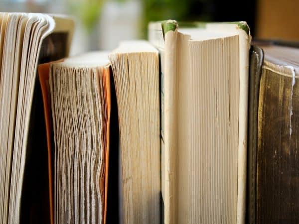 Livros enfileirados.
