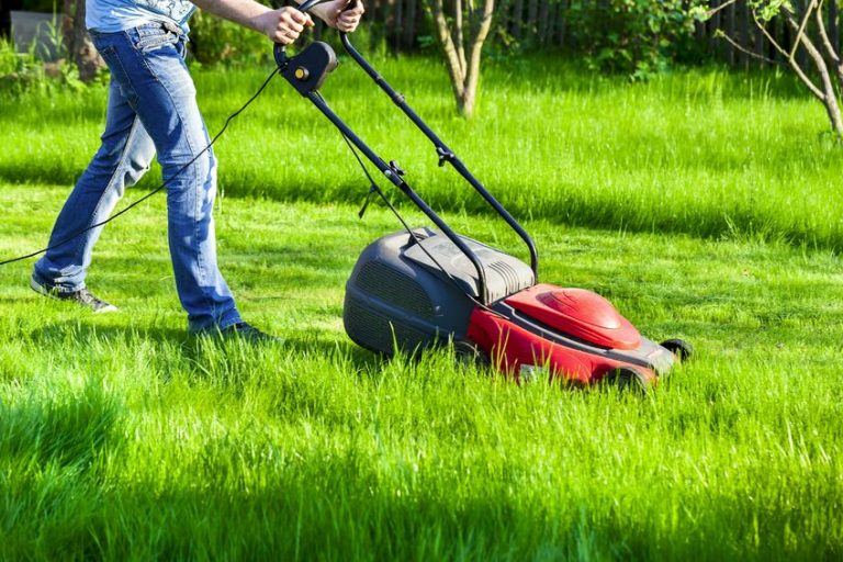cutting the grass with a mower