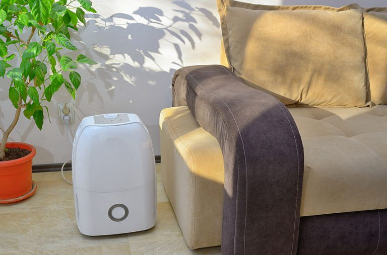 dehumidifier in the living