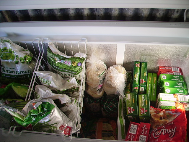 freezer with food