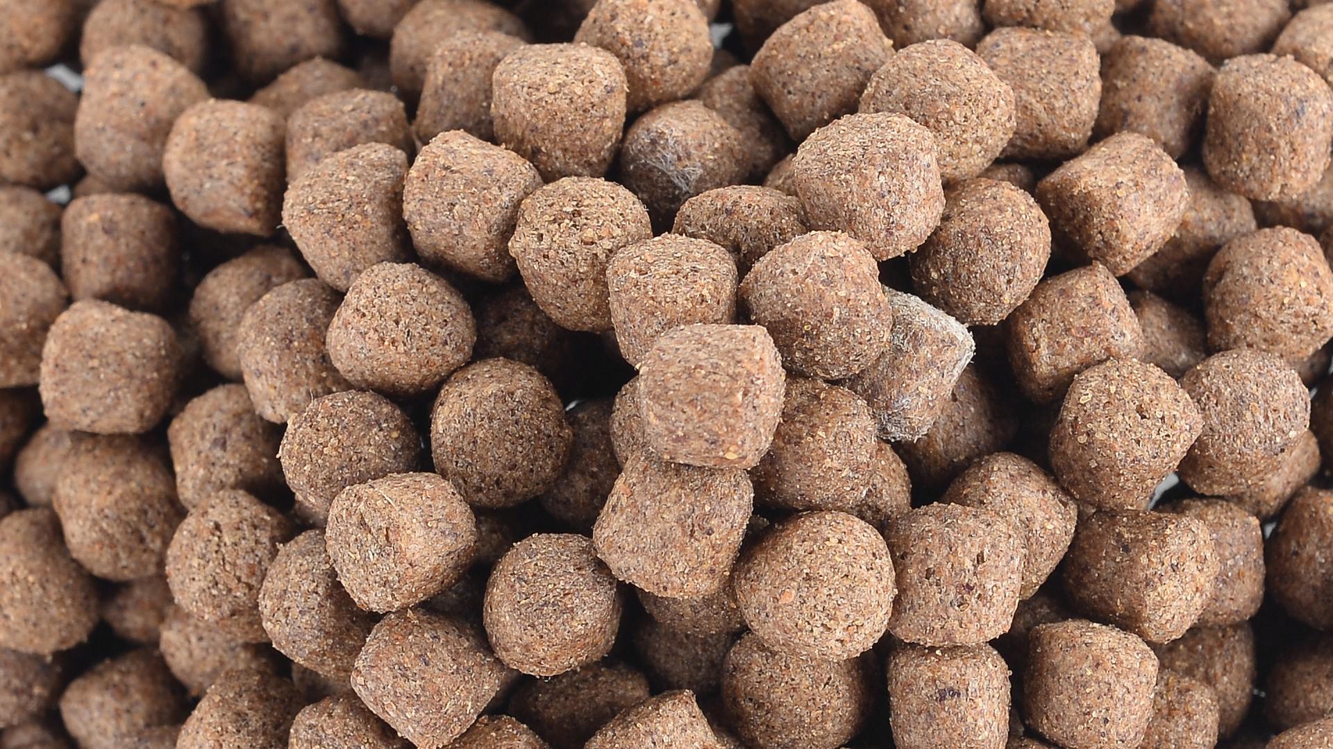 fish food balls