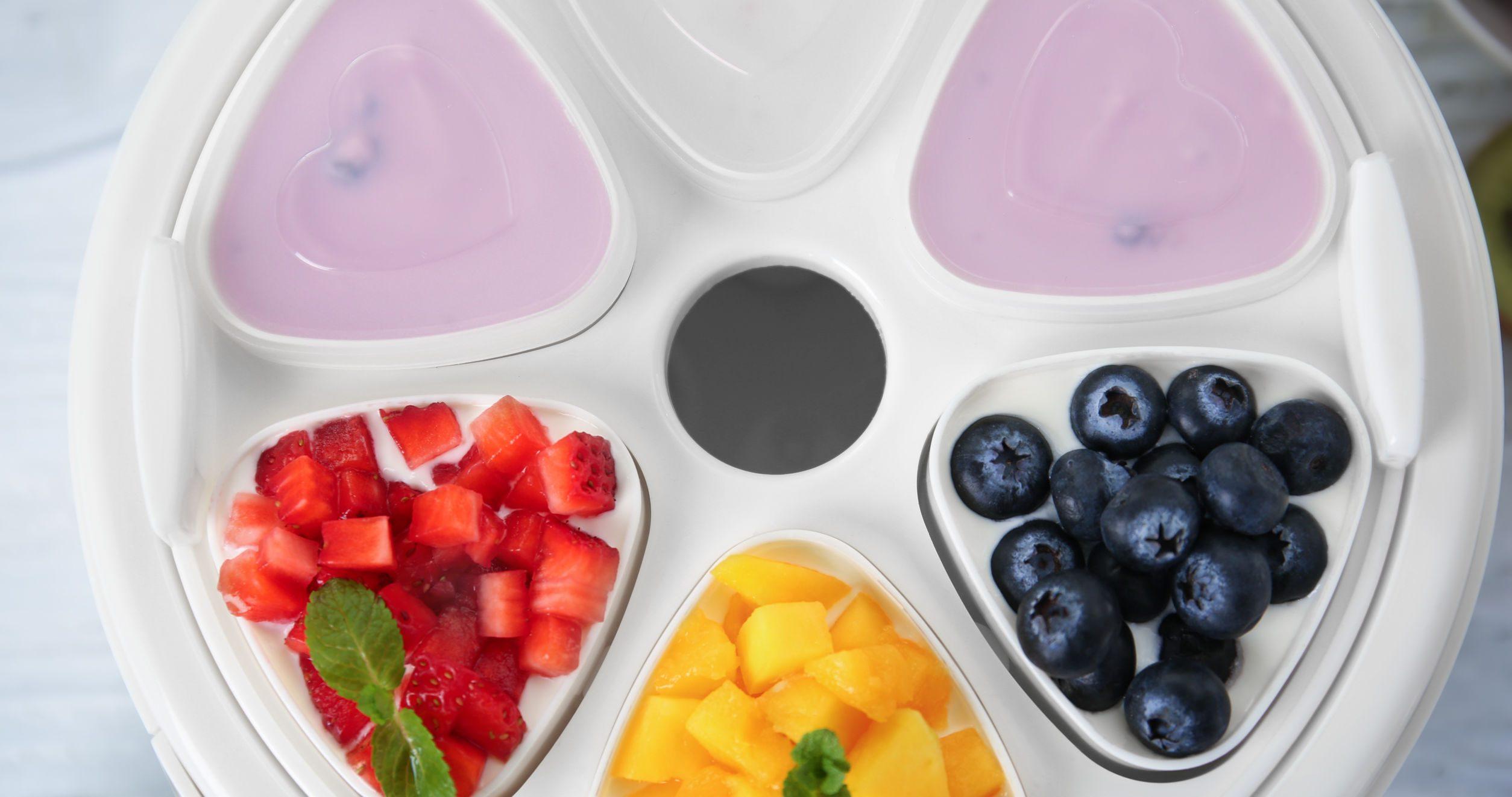 Iogurteira: Qual é a melhor de 2020?