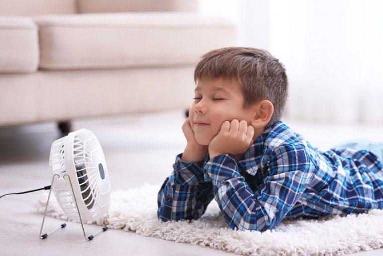 little kid with a fan