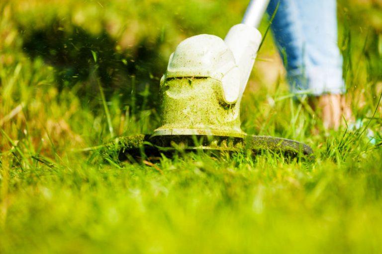 cortando a grama no jardim