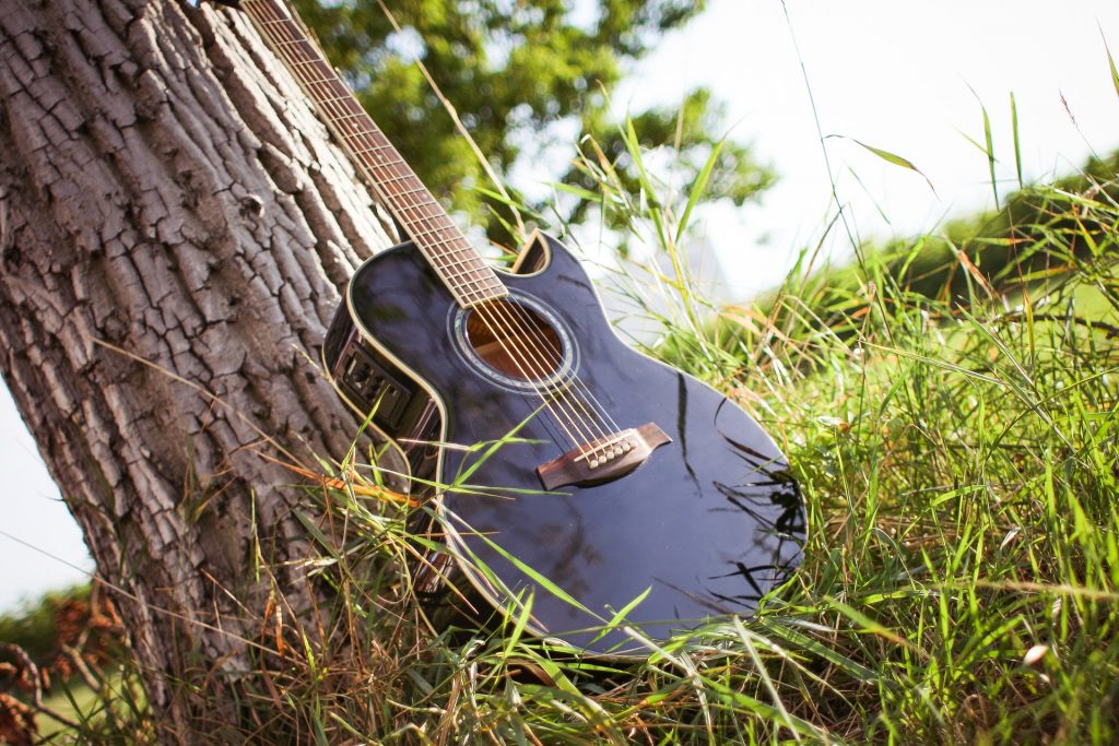 electroacoustic guitar next to a tree