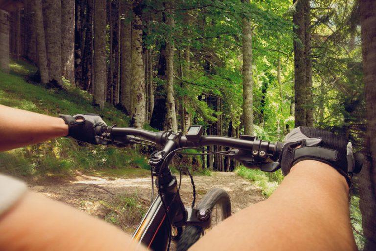 ciclista na floresta
