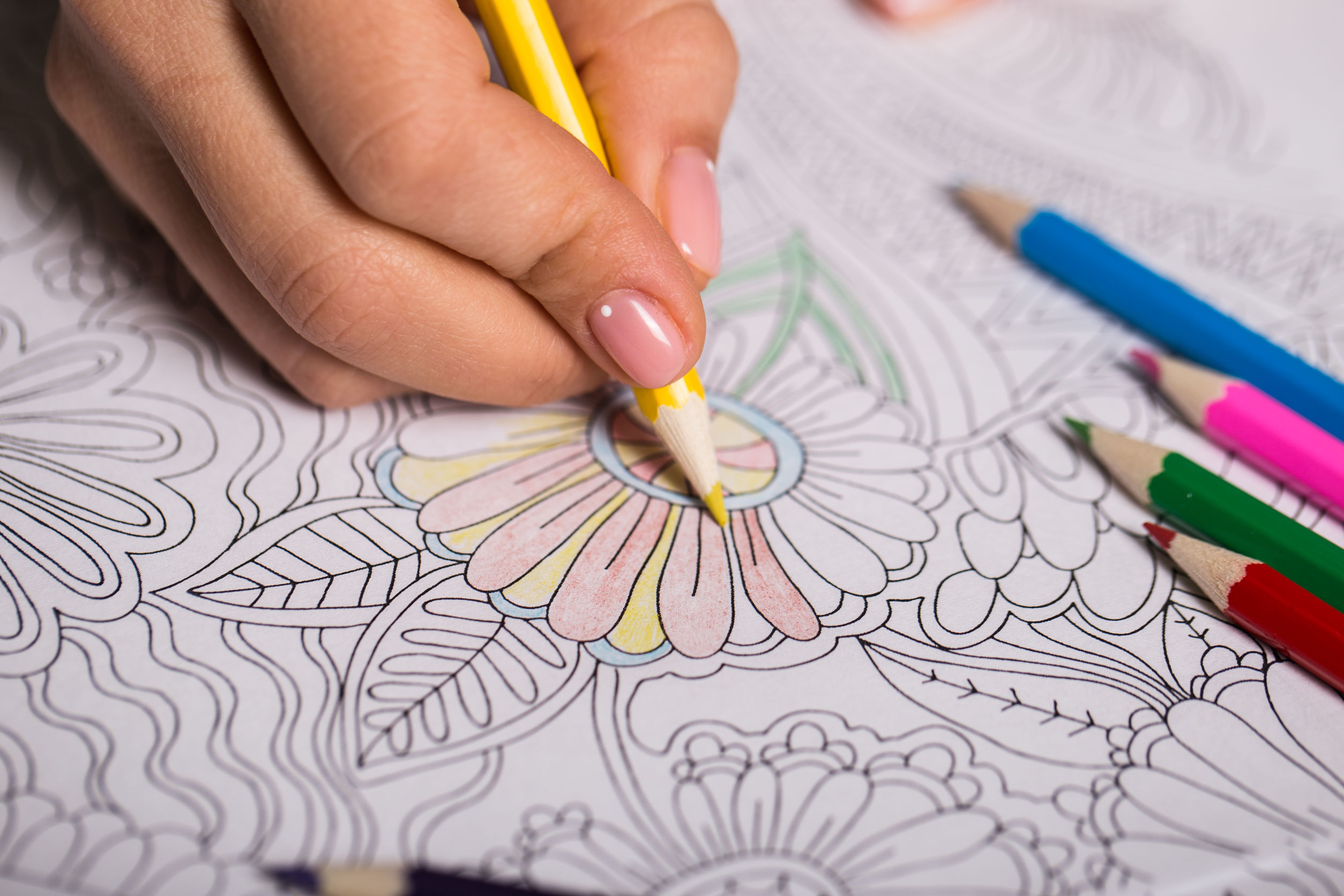 La muchacha pinta un libro para colorear para los adultos