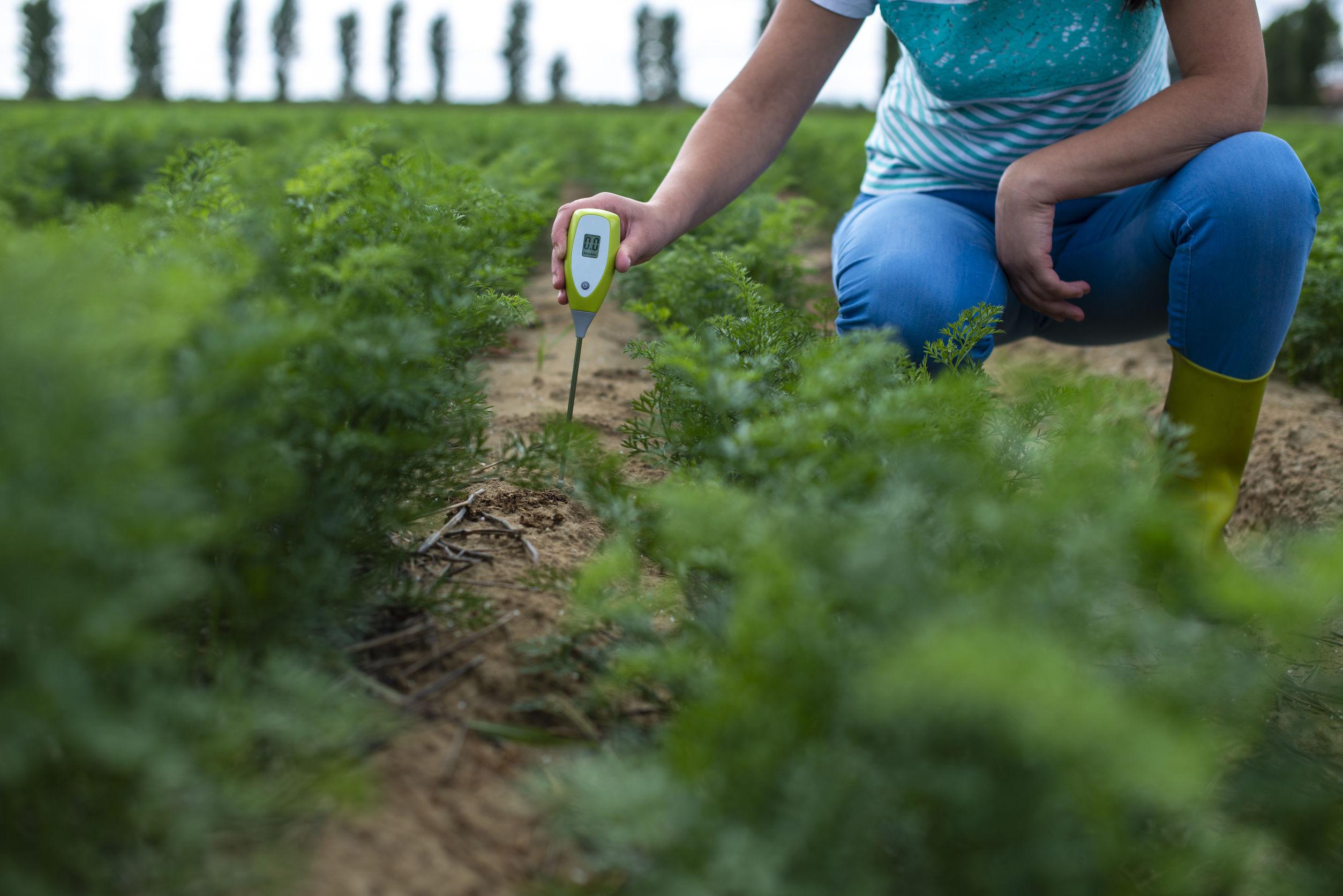 Mujer midiendo el PH en sembradio
