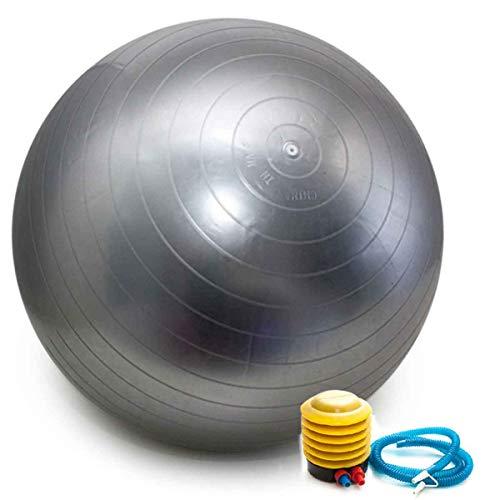 Bola Pilates Yoga Abdominal Ginastica Fitness 55 cm C/Bomba Cor: Prata