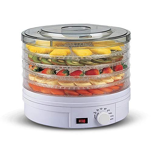 Staright Máquina desidratadora elétrica de alimentos Secador de frutas de nível 5 bandejas Secador de ervas de carne bovina com termostato ajustável